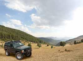 jeep-safari